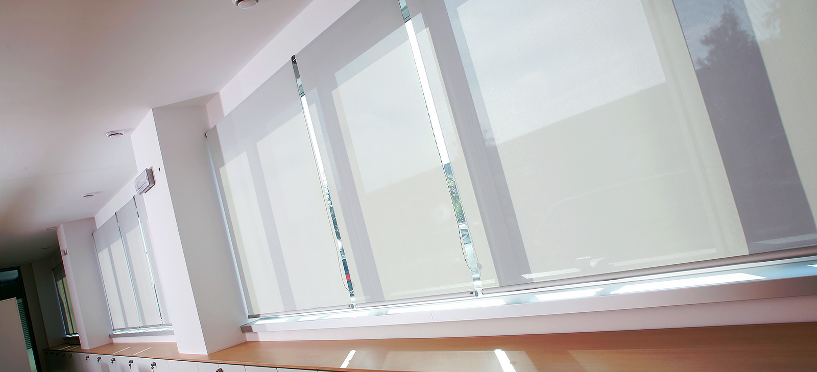 Dalex - Blinds Technology