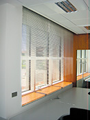 Venetian blinds by Dalex - Light as you want it